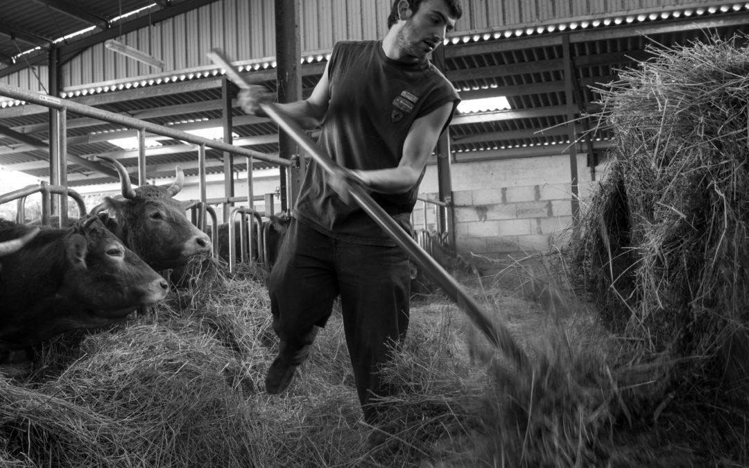 Exploitation agricole – la Ferme de Fruchaudière