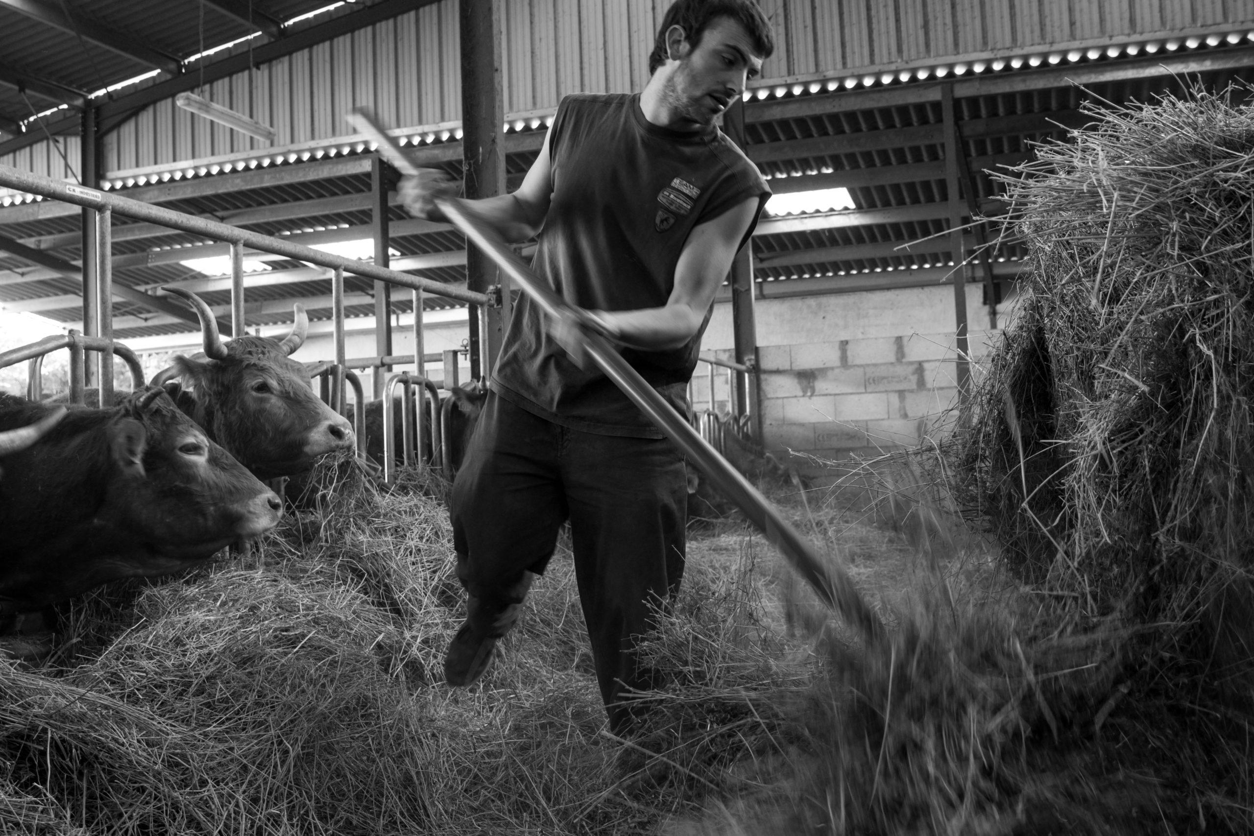Ferme agricole 1